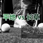 平地vs长草-黑白